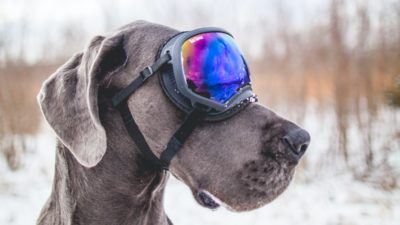 Sciare preparati e consapevoli