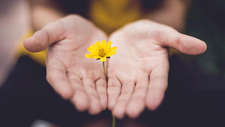 Il nuovo corso di Eukinetica: Kindness, l'arte del dialogo